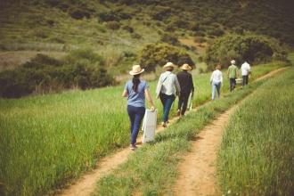A walk in the field