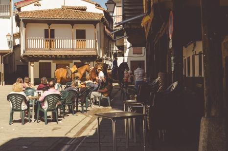 Horses in Villanueva de la Vera