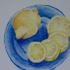 Lemons watercolour